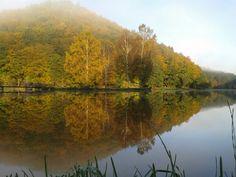 Spiegel Herbst