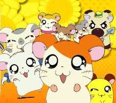 Hamtaro, I wanna show this to my little niece, I'm sure she'll love it