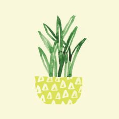 Day 76 #JBP100Plants #The100DayProject #APlantADay