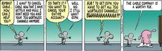 Pearls Before Swine Comic Strip, July 08, 2014 on GoComics.com