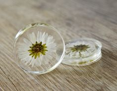 real daisy plugs flowers plugs wedding by JEWELRYandPLEASURE