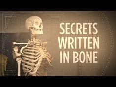 Remember that skeleton hanging in the front of your classroom? In some schools, those were actual human remains. We used science to figure out the story behind one of them.