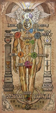 Anatomy witchcraft Sephiroth pentagram pentacle occult mercy tree of life occultism kabbalah Qabalah thelema Occultus severity Kether the occultus Wicca, Magick, Witchcraft, Alchemy Symbols, Magic Symbols, Tarot, Les Chakras, Esoteric Art, Occult Art