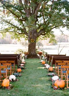 Take the first steps as husband and wife down an aisle lined with pumpkins of all shapes, sizes and colors. We love the idea of adding fall foliage to the mix.