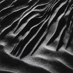 Untitled, from the portfolio Wind, Water and Sand by Henry Troup / American Art Photography 2017, Dark Photography, Abstract Photography, Photography Ideas, Gcse 2017, Dark Complexion, Garden Of Earthly Delights, Used Cameras, Fotografia Macro
