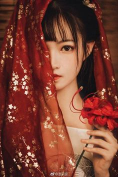 Idea for a senior photo. Tumbr Girl, Mode Kawaii, Ancient Beauty, China Girl, Chinese Clothing, Hanfu, Beautiful Asian Girls, Japanese Girl, Japanese Kimono