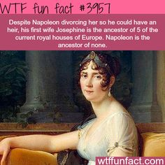 Amazing And Weird Facts You Probably Didnt Know Napoleon's first wife – WTF fun facts Wtf Fun Facts, Funny Facts, Funny Memes, Random Facts, Crazy Facts, Weird History Facts, Odd Facts, Strange History, Funniest Memes