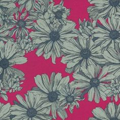 Cosmo Maraschino (Cosmo Maraschino) - AbigailRyan Wallpapers - An amazingly bright coloured design, of the Cosmo daisy flower.  Available in two colourways, shown here in the bold fuchsia pink background, with grey flowers, drawn in navy blue. Please request sample for true colour match.