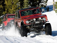 Bronco in the snow