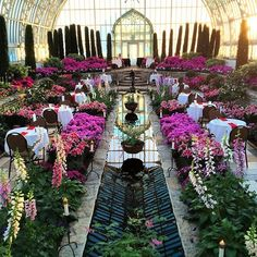 Beautiful night for a romantic dinner! Como Conservatory, Sunken Garden, Romantic Dinners, Wedding Wishes, Shrubs, Globe, Things To Do, Sidewalk, Valentines
