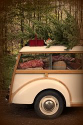 Things to take on a Christmas picnic - tea pot, blankets, lunch goodies, Christmas tree...