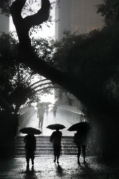 Hong Kong in the rain pictures - photography of wet HK by Christophe Jacrot Walking In The Rain, Singing In The Rain, Ansel Adams, Christophe Jacrot, Fan Ho, Arte Black, Fotografia Social, Foto Poster, Love Rain
