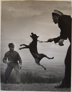 Eugene Smith, dog and soldiers