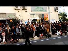 3ο Δημοτικο Σχολείο Ρεθύμνου, Παρέλαση  28 οκτωβριου 2017