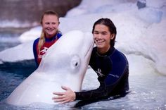 Twilight star Booboo Stewart gets friendly with a beluga whale. (Whatever. Meredith you rock this pic!!)