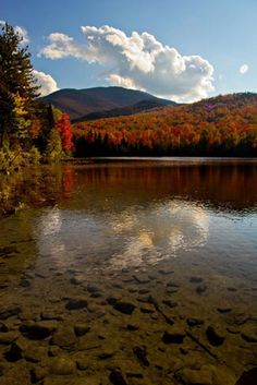 Crystal Clear Water in the Adirondacks