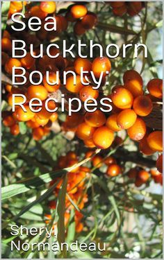 Sea Buckthorn Bounty: Recipes Sea Berries, Apple Chutney, Food Reviews, Fruit And Veg, Apple Tree, Alternative Health, Aquaponics, Clean Recipes, Health Problems