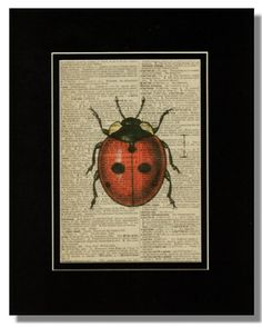 LADYBUG Lady Bug ILLUSTRATION on Vintage by BlythHouseCreations, $10.00