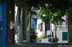 Cipro Tradizionale www.horizonviaggi.it