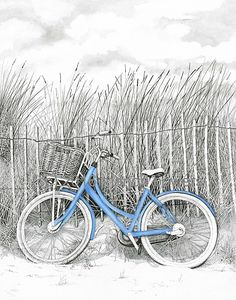 """""""Beach Bike by Marjorie Bowers. Original pen & ink drawing. Love the detail and pop of blue."""