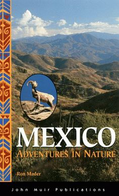 mexico adventures in nature - Google Search