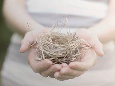 Mini birds nest
