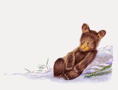 Bear Cubs, Bears, Baby Bear Tattoo, Magazine Editorial, Charlottesville, Rock Painting, Editorial Design, Painted Rocks, Fairies