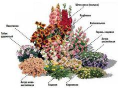 Дизайн клумбы на садовых участках. Обсуждение на LiveInternet - Российский Сервис Онлайн-Дневников