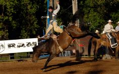 55th Annual Penn Valley Rodeo | eTerritorial Dispatch