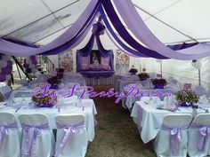 Sofia the First Royal Birthday Party- Draping and Linen.