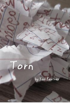 Click to preview Torn pocket and trade book