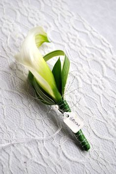 Image result for raspberry canna lily buttonholes