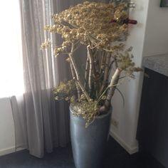 Berenklauw bloemstuk