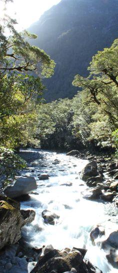 The Chasm near Milford Sound - South Island, New Zealand