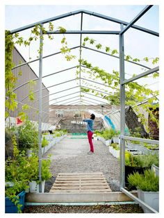 Tent Structure atop a rooftop garden!