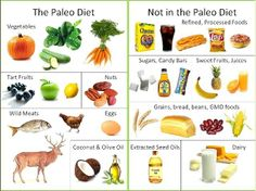 Палео диета от наших предков: худейте без вреда для здоровья