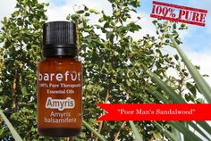100% PURE Amyris Essential Oil is available for $6 OFF Today Only! https://barefut.com/?a=420