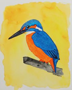 Kingfisher - Watercolor & India Ink by Brina Beury #art #illustration #bird