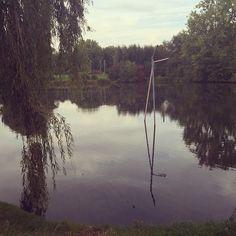 Pailles dans le lac du héron