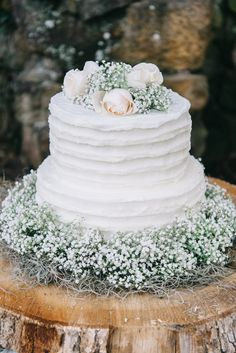 Baby's breath and rose wedding cake | Nicole Colwell Photography