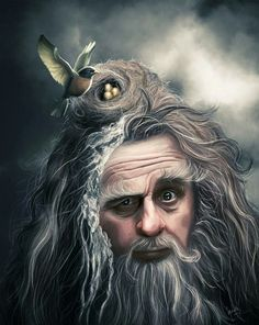 Radagast the Brown. This isn't mine, but unfortunately I don't know the artist :(