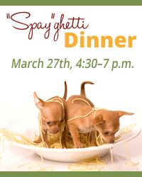"Don't forget about the Centre County PAWS ""Spay""ghetti dinner, March 27th from 4:30-7pm!"