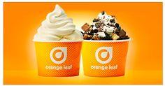 Orange Leaf: Buy One, Get One Free Frozen Yogurt (Facebook offer) - Money Saving Mom®