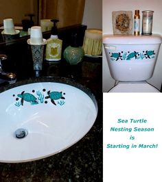 It S Nesting Season All Year Long At Sinkadoodles If You Want To Watch Real Sea Turtles In Florida