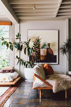 House plants, oversized photography, living room, pineapple, pillows and chairs.