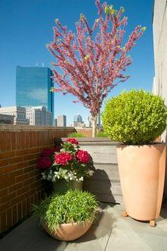 Boston, MA Penthouse Rooftop Garden deck