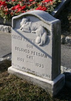In graceful bas-relief on white marble is the 1923 stone for Silver Prince, a Persian cat at Hartsdale Pet Cemetery.