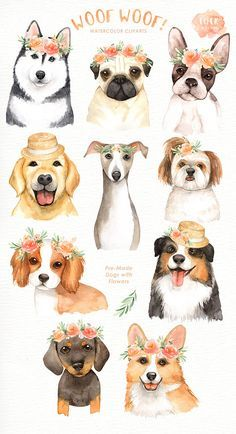 The set of high quality hand painted watercolor dogs and flower bouquet images. A Pug, Corgi, Australian Shepherd, Siberian Husky, Golden Retriever and other dog illustrations are included in this set. Included 10 beautiful floral bouquets and wreaths arrangements. Perfect for wedding