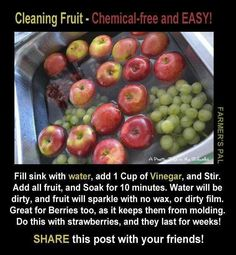 Cleaning fruit - fill sink with water, add 1 C. Add all fruit and soak for 10 minutess. Water will be dirty and fruit will sparkle with no wax or dirty film.This would be much cheaper than the fancy fruit/veggie wash that I buy. All Fruits, Fruits And Vegetables, Get Healthy, Healthy Eating, Healthy Recipes, Healthy Food, Healthy Weight, Fruit Veggie Wash, Cleaning Tips
