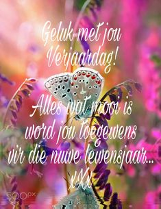 Baie geluk Caren, geseende jaar vir jou. Happy Birthday Pictures, Happy Birthday Wishes, Birthday Greetings, Birthday Cards, Birthday Qoutes, Guys And Dolls, Happy B Day, Inspirational Thoughts, Cute Quotes